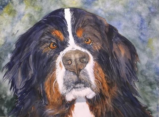Bosco - animal painting