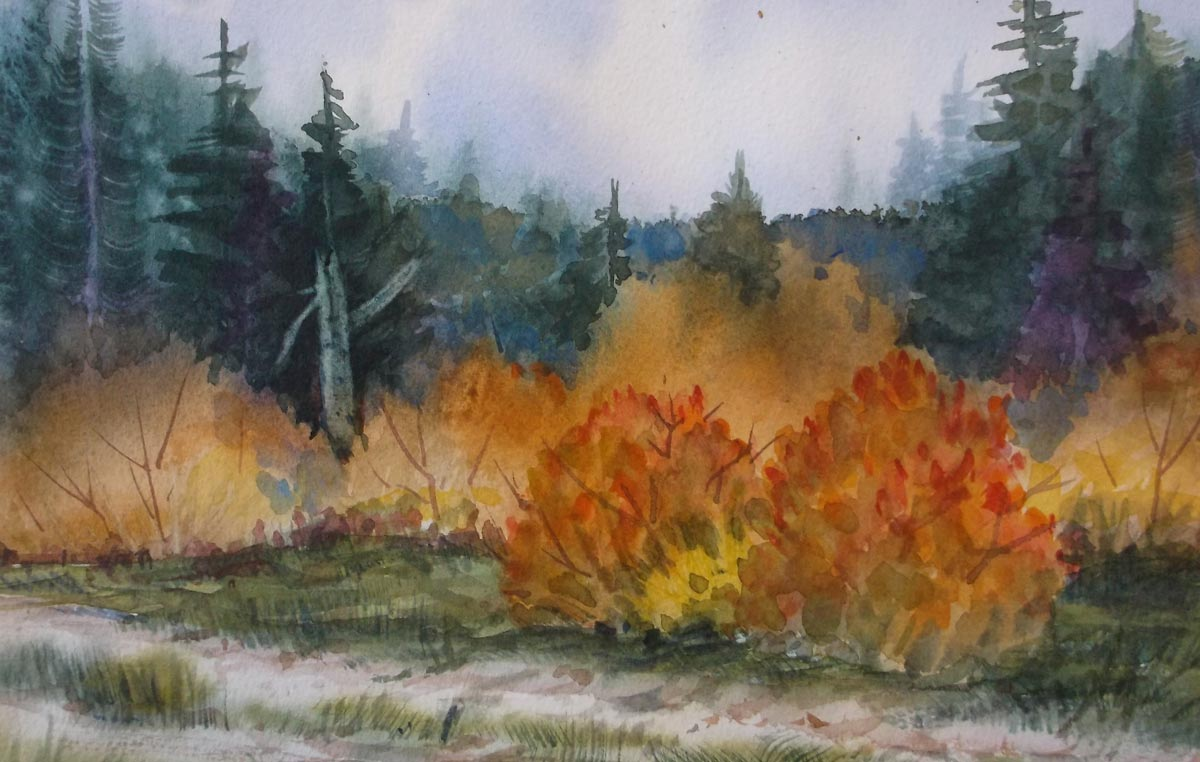 Fall by Susan Barry