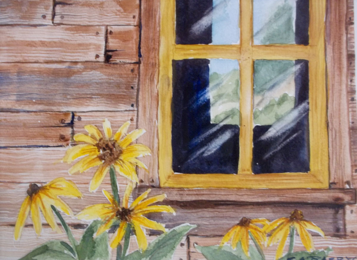 Buildings by Susan Barry - Old Window