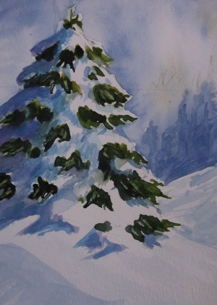 Trees by Susan Barry - Snow Covered
