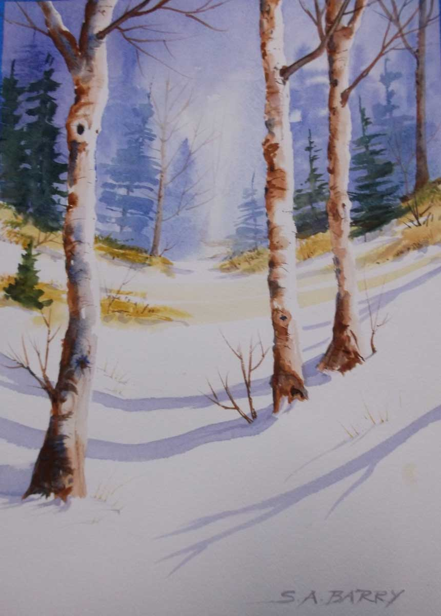 Winter trees by Susan Barry