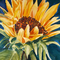 Other watercolors by Susan Barry