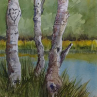 Watercolor trees by Susan Barry